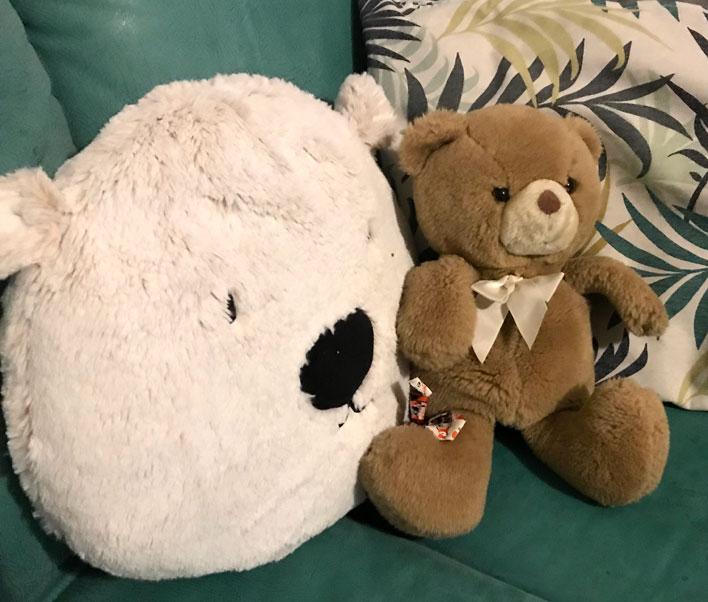 bärengruppe